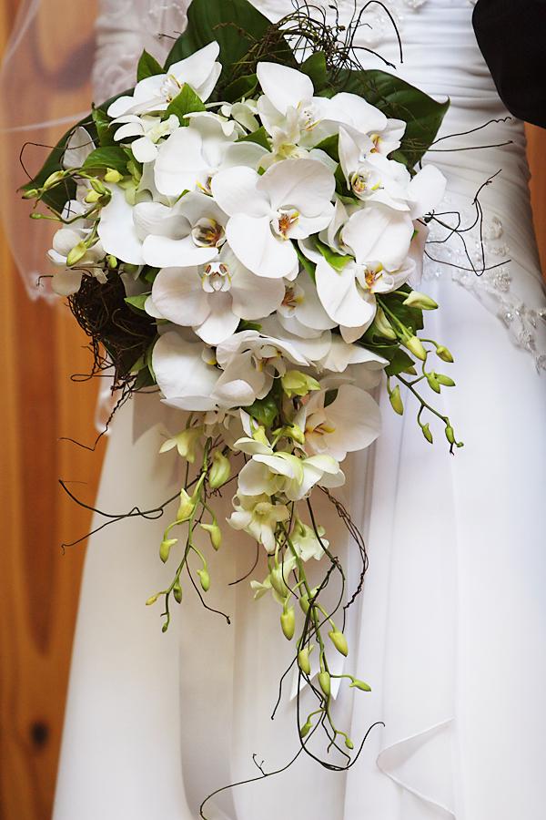Elisma Rose.weddings
